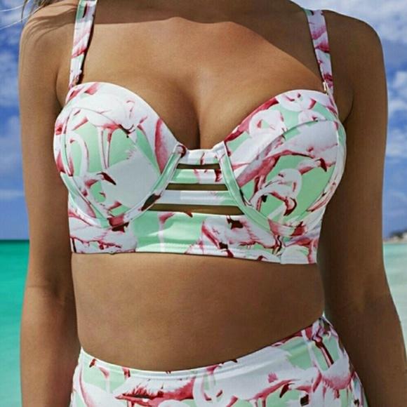 4a8894c8a4eed Gabi Fresh Swim Sexy Swim | Sexy Gabi Fresh Plus Flamingo Bikini Top ...